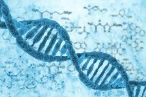 ساخت کوچکترین دیود دنیا با مولکول DNA