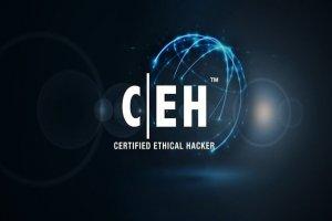آموزش CEH (هکر کلاه سفید): آسیبپذیریهای امنیتی ذاتی در مدل OSI