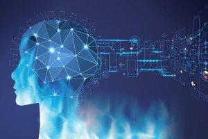 ۶ زمینه تخصصی داغ در حوزه مشاغل شبکه