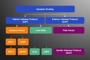 آشنایی با پروتکلهای مسیریابی پر کاربرد در دنیای شبکه