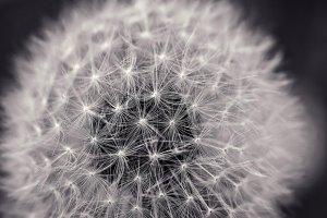 تفاوت همبندی (توپولوژی) فیزیکی و منطقی شبکه چیست؟