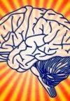 برای تقویت ذهنتان؛ این ده مطلب را بخوانید!