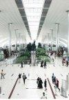 این برنامه به شما اجازه سفر به امارات را میدهد + لینک دانلود